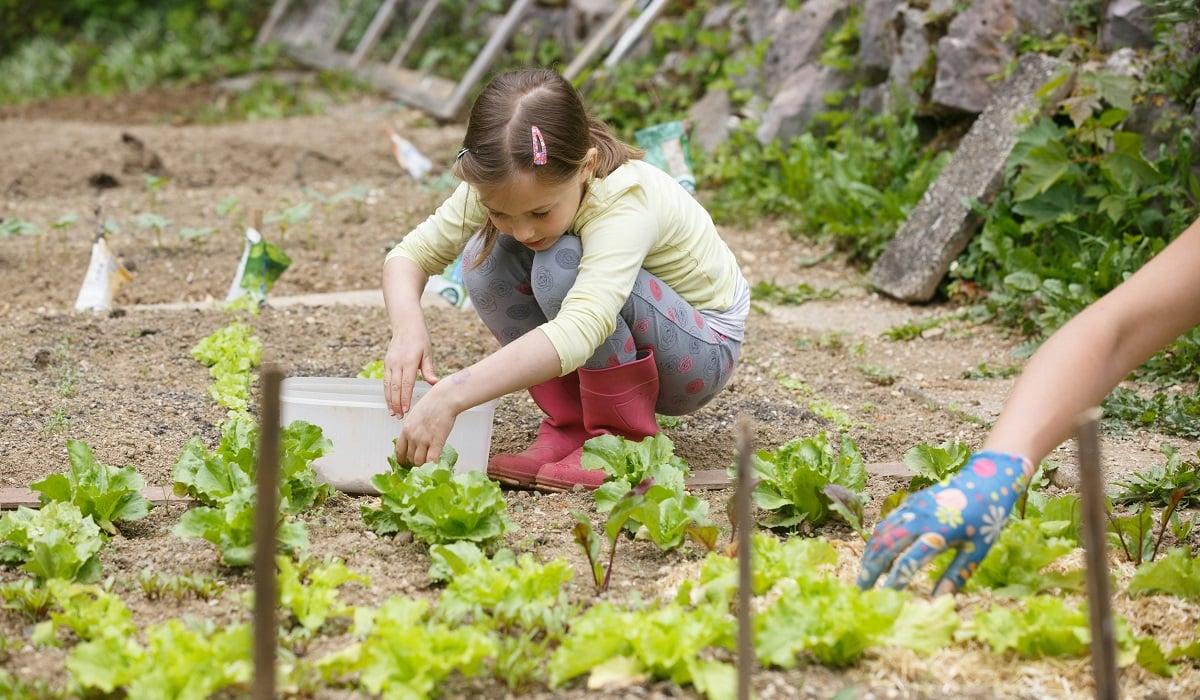 Educar niños medioambiente