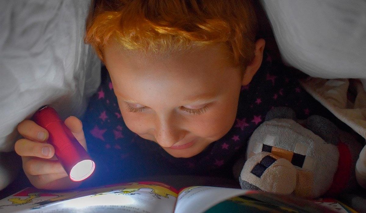 Habitos lectura libros